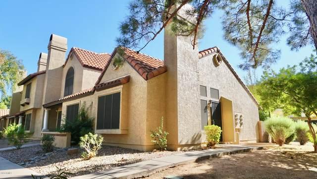 921 W University Drive #1154, Mesa, AZ 85201 (#6139639) :: Luxury Group - Realty Executives Arizona Properties