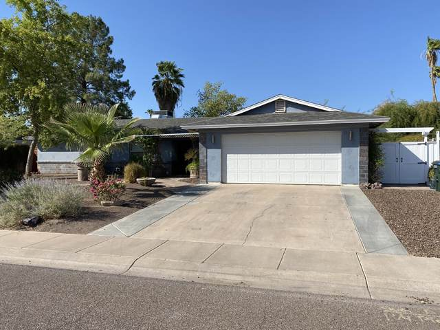 3708 E Wethersfield Road, Phoenix, AZ 85032 (MLS #6139643) :: Lifestyle Partners Team