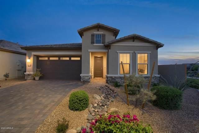 6515 E Morningside Drive, Phoenix, AZ 85054 (MLS #6139730) :: Brett Tanner Home Selling Team