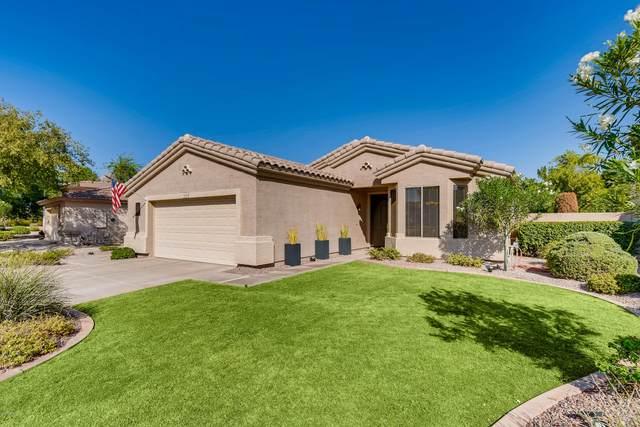 6265 S Salt Cedar Place, Chandler, AZ 85249 (MLS #6139736) :: Keller Williams Realty Phoenix