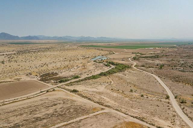 -- #401-670-19C, Tonopah, AZ 85354 (MLS #6139745) :: The Property Partners at eXp Realty