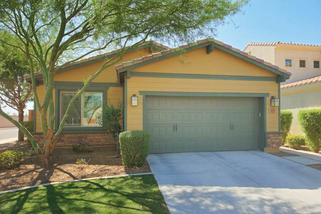 291 E Indigo Drive, Chandler, AZ 85286 (MLS #6139790) :: Keller Williams Realty Phoenix