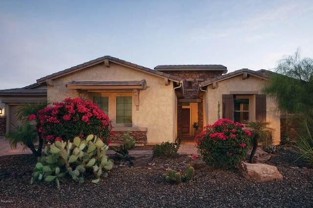9369 W Via Montoya Drive, Peoria, AZ 85383 (MLS #6139812) :: Sheli Stoddart Team | M.A.Z. Realty Professionals