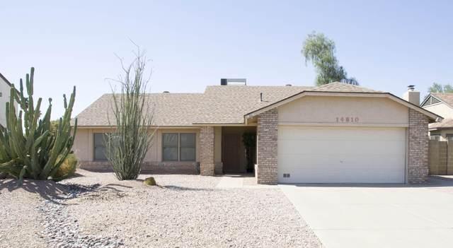 14810 N 44TH Street, Phoenix, AZ 85032 (MLS #6139830) :: Brett Tanner Home Selling Team