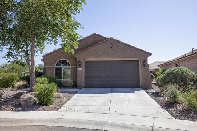 26265 W Potter Drive, Buckeye, AZ 85396 (MLS #6139845) :: Brett Tanner Home Selling Team