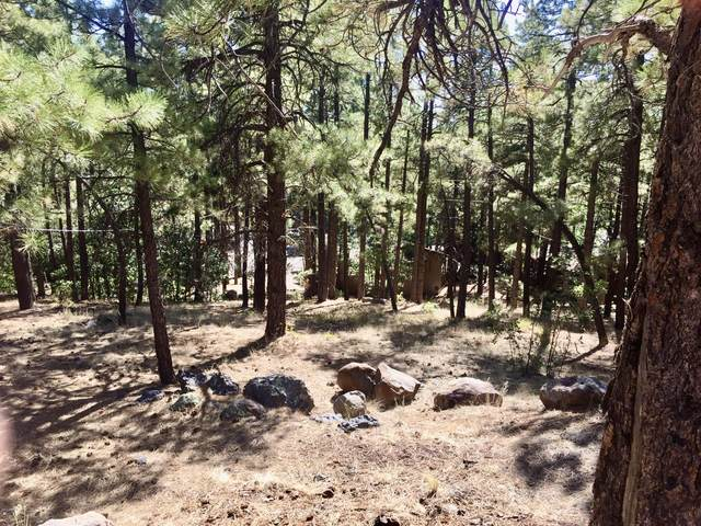65 W Campfire Trail, Munds Park, AZ 86017 (MLS #6140096) :: The Everest Team at eXp Realty