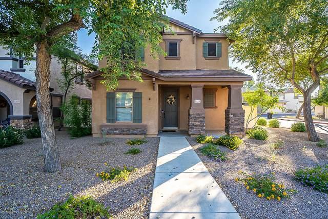 1329 S Sunview, Mesa, AZ 85206 (MLS #6140103) :: Dave Fernandez Team | HomeSmart