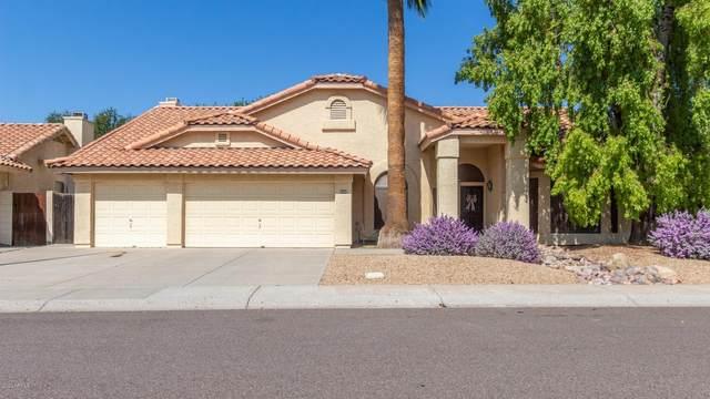3802 N Wintergreen Way, Avondale, AZ 85392 (MLS #6140117) :: Lifestyle Partners Team