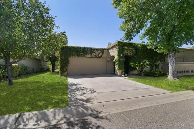 8153 E Del Caverna Drive, Scottsdale, AZ 85258 (MLS #6140138) :: Devor Real Estate Associates