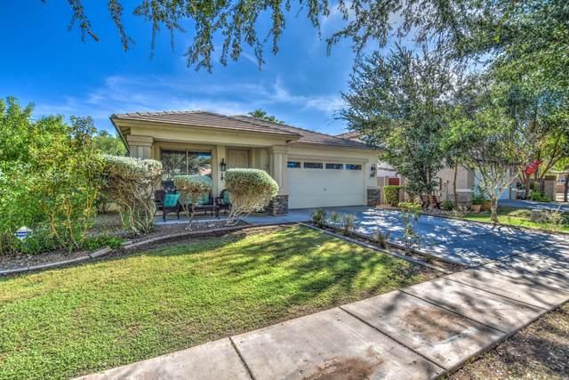 3625 E Bruce Avenue, Gilbert, AZ 85234 (MLS #6140140) :: The Property Partners at eXp Realty