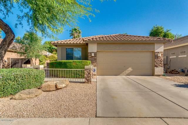21418 E Calle De Flores Court, Queen Creek, AZ 85142 (MLS #6140228) :: Devor Real Estate Associates