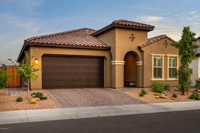 18017 N 65TH Place, Phoenix, AZ 85054 (MLS #6140247) :: The Daniel Montez Real Estate Group