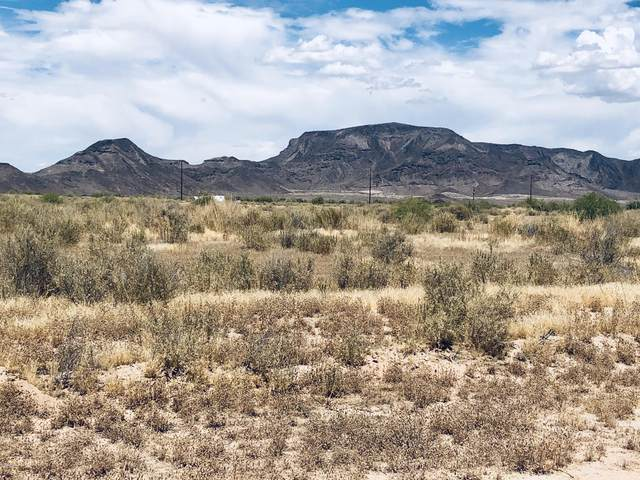 0 W Jasmine Lane, Tonopah, AZ 85354 (MLS #6140425) :: The Ellens Team