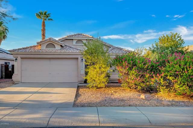 13194 W Saguaro Lane, Surprise, AZ 85374 (MLS #6140462) :: Sheli Stoddart Team | M.A.Z. Realty Professionals