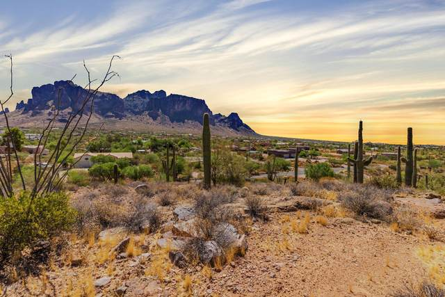 3270 N Val Vista Road, Apache Junction, AZ 85119 (MLS #6140568) :: Nate Martinez Team