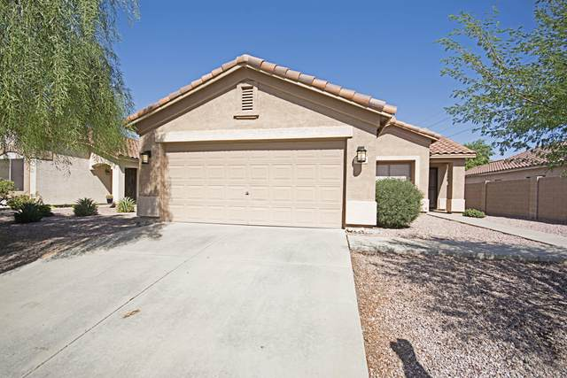 3030 W Lucia Drive, Phoenix, AZ 85083 (MLS #6140576) :: NextView Home Professionals, Brokered by eXp Realty