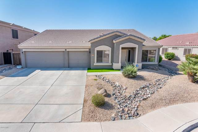 8365 W Berridge Lane, Glendale, AZ 85305 (MLS #6140693) :: Lifestyle Partners Team