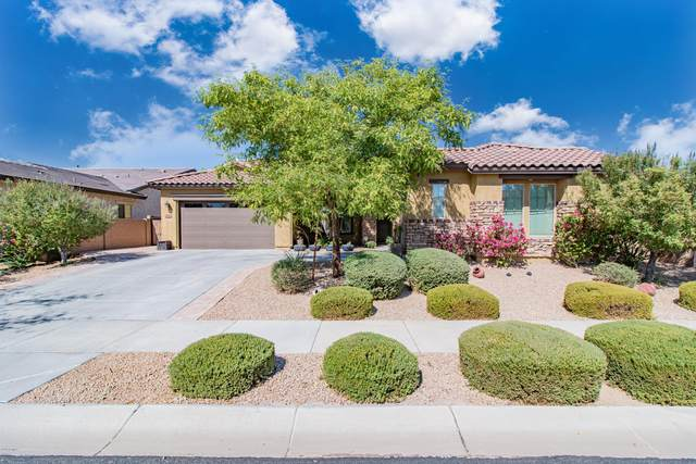 19852 E Apricot Lane, Queen Creek, AZ 85142 (MLS #6140798) :: Sheli Stoddart Team | M.A.Z. Realty Professionals