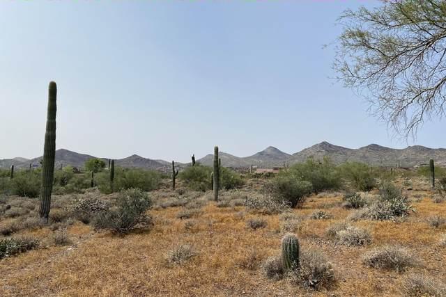 5686 E Azure Hills Drive, Cave Creek, AZ 85331 (MLS #6140824) :: Midland Real Estate Alliance
