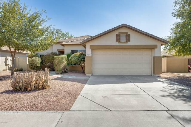 411 W Musket Place, Chandler, AZ 85286 (MLS #6140886) :: neXGen Real Estate