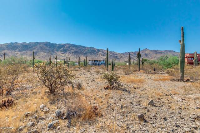 10215 S 27TH Avenue, Laveen, AZ 85339 (MLS #6140934) :: Conway Real Estate