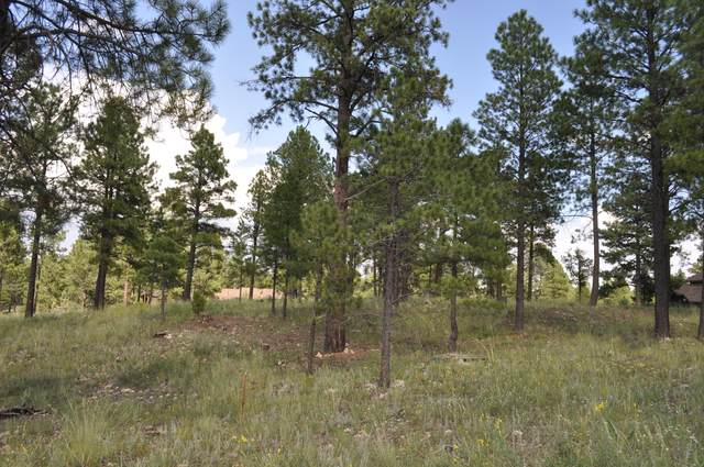 3235 S Tehama Circle, Flagstaff, AZ 86005 (MLS #6140941) :: Arizona Home Group