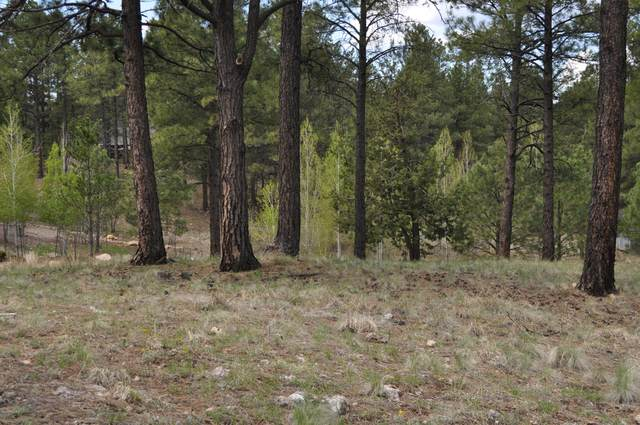 3484 S Del Mar Court, Flagstaff, AZ 86005 (MLS #6140955) :: The J Group Real Estate | eXp Realty