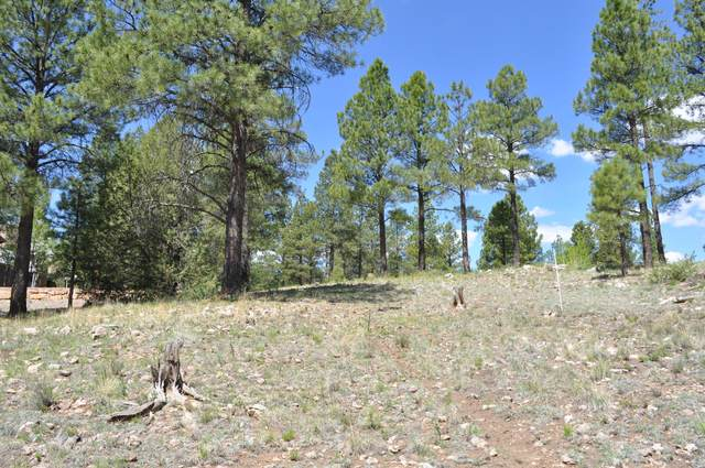2601 E Buena Vista Court, Flagstaff, AZ 86005 (MLS #6140968) :: Arizona Home Group