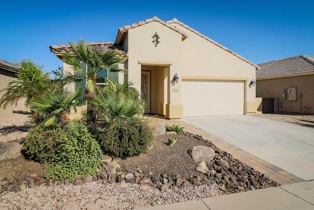 177 S 225TH Avenue, Buckeye, AZ 85326 (MLS #6140994) :: Scott Gaertner Group