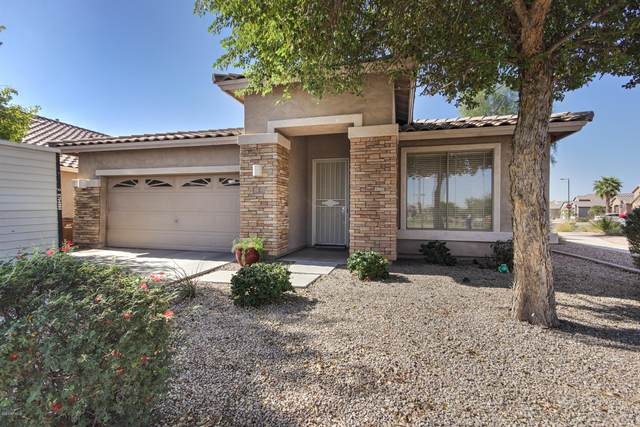 7 W Macaw Court, San Tan Valley, AZ 85143 (MLS #6141042) :: The J Group Real Estate | eXp Realty