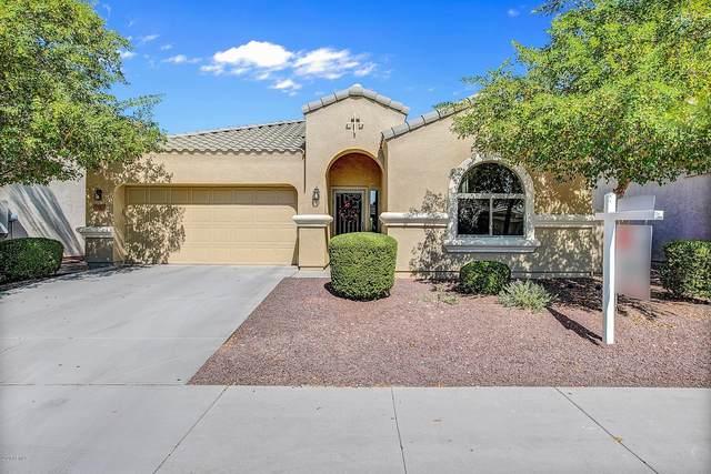9582 W Quail Avenue, Peoria, AZ 85382 (MLS #6141192) :: Sheli Stoddart Team | M.A.Z. Realty Professionals
