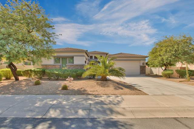 14853 W Escondido Drive S, Litchfield Park, AZ 85340 (MLS #6141298) :: The Riddle Group