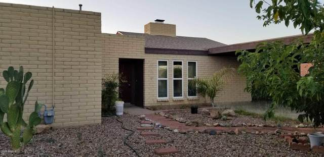 431 Savanna Drive, Sierra Vista, AZ 85635 (MLS #6141353) :: Arizona Home Group