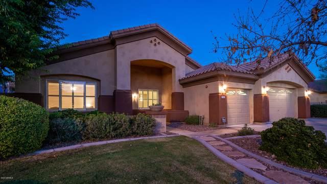 8558 W Clara Lane, Peoria, AZ 85382 (MLS #6141409) :: The Laughton Team