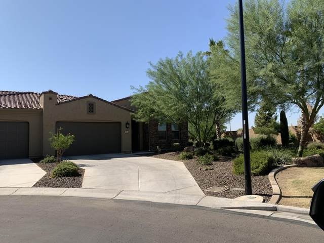 16961 W Holly Street, Goodyear, AZ 85395 (#6141421) :: AZ Power Team | RE/MAX Results