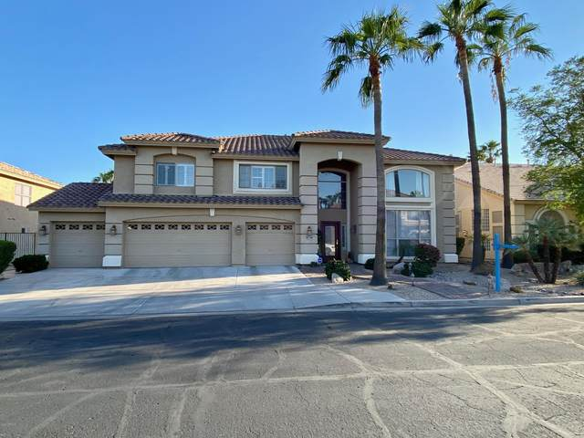12931 W Llano Drive, Litchfield Park, AZ 85340 (MLS #6141502) :: Nate Martinez Team