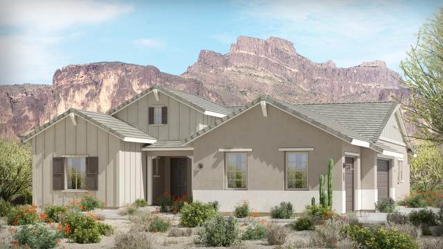 744 N Moon Road, Apache Junction, AZ 85119 (MLS #6141720) :: Yost Realty Group at RE/MAX Casa Grande