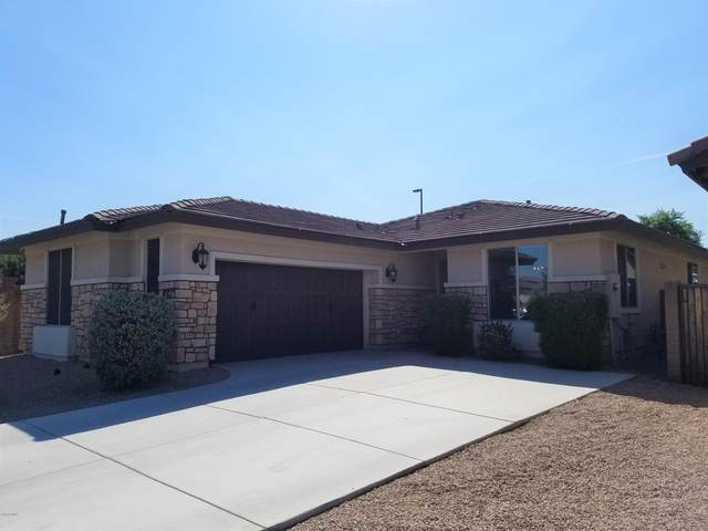 3071 E Morgan Drive, Gilbert, AZ 85295 (MLS #6141729) :: The Daniel Montez Real Estate Group