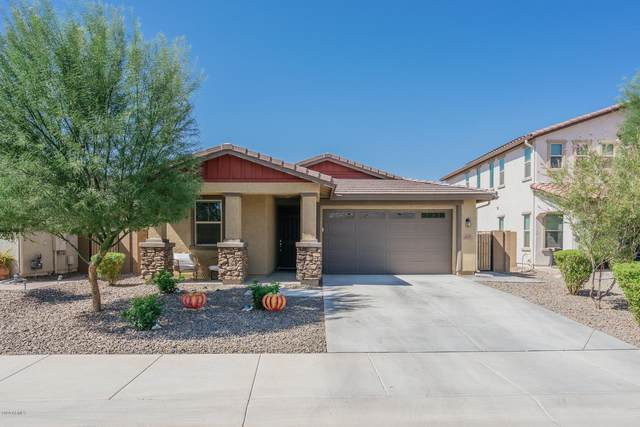 6820 N 86TH Lane, Glendale, AZ 85305 (MLS #6141818) :: My Home Group