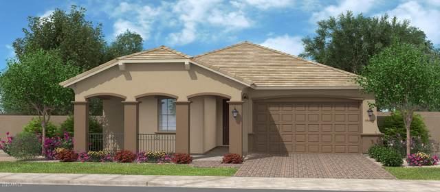 18748 N Jameson Drive, Maricopa, AZ 85138 (MLS #6141889) :: The J Group Real Estate | eXp Realty