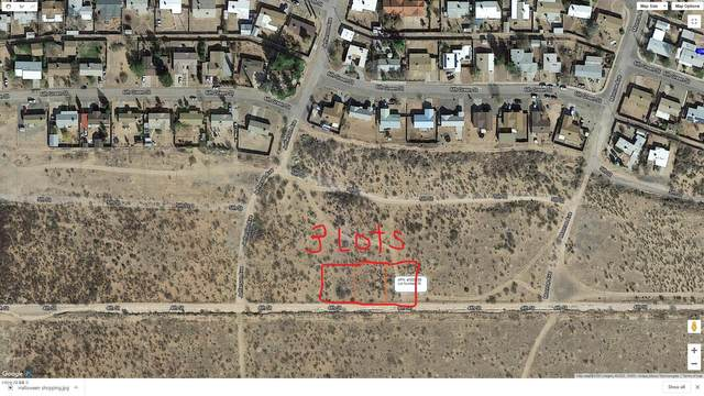 0 E 4th Street, Douglas, AZ 85607 (MLS #6141963) :: Devor Real Estate Associates