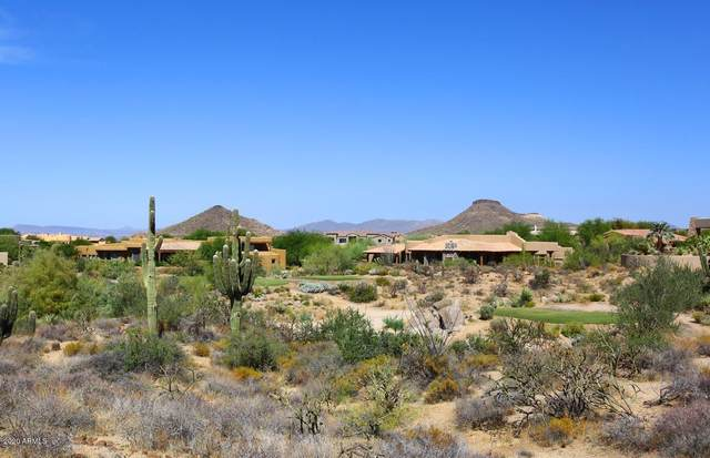 10765 E Cinder Cone Trail, Scottsdale, AZ 85262 (MLS #6141994) :: The Riddle Group