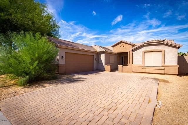 43316 W Neely Drive, Maricopa, AZ 85138 (MLS #6142080) :: Sheli Stoddart Team   M.A.Z. Realty Professionals
