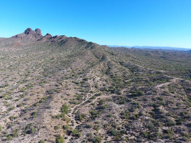 0 S Vulture Mine Road, Wickenburg, AZ 85390 (MLS #6142201) :: neXGen Real Estate