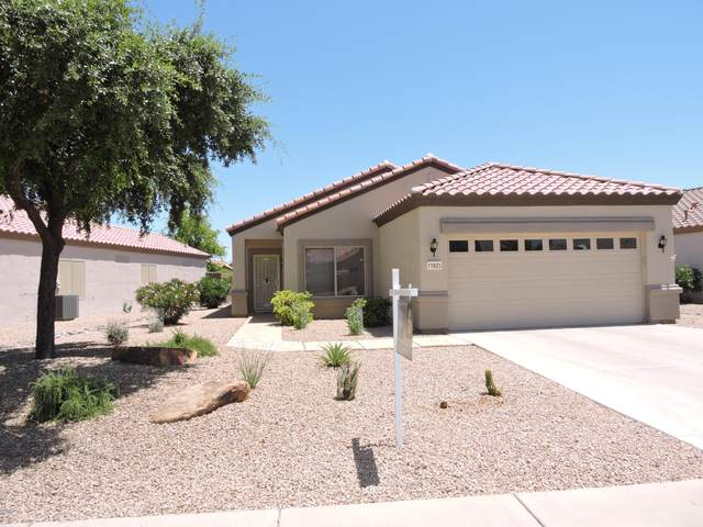 17933 N Bridle Lane, Surprise, AZ 85374 (MLS #6142242) :: Scott Gaertner Group