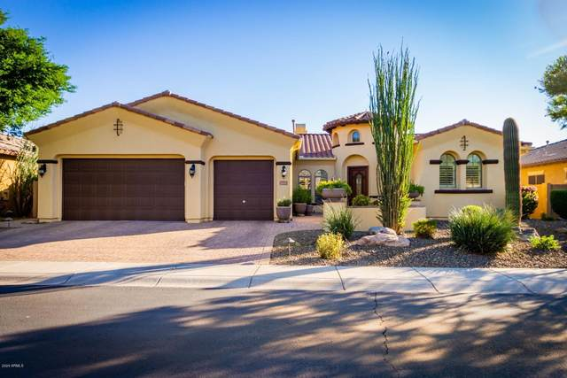 12057 W Skinner Drive, Peoria, AZ 85383 (MLS #6142590) :: Lucido Agency