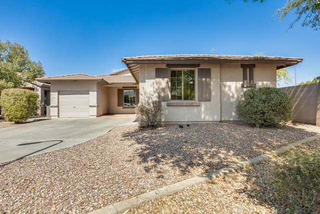 2304 W Fawn Drive, Phoenix, AZ 85041 (MLS #6142657) :: Midland Real Estate Alliance