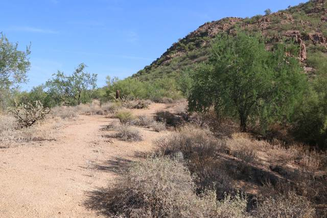 35113 N 25TH Avenue, Phoenix, AZ 85086 (MLS #6142683) :: Devor Real Estate Associates