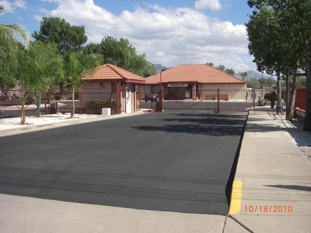 455 S Delaware Drive #160, Apache Junction, AZ 85118 (MLS #6142699) :: Walters Realty Group