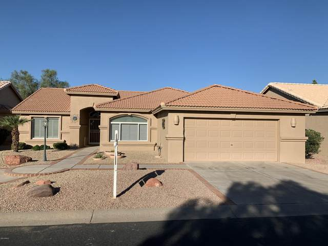 24410 S Agate Drive, Sun Lakes, AZ 85248 (MLS #6142876) :: Midland Real Estate Alliance